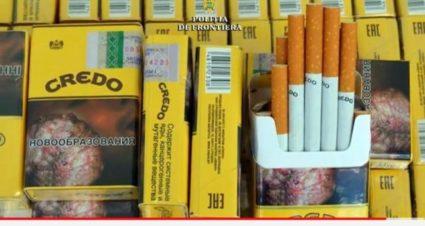 Credo cigarettes smuggle